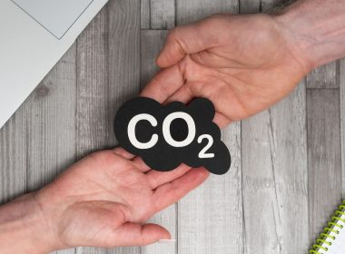 Carbon Dioxide Removal Marketplaces - Can They Remove Corporate Emissions? - Carbon Herald