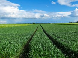 Low Participation Of Farmers In Carbon Dioxide Reduction Programs In The US - Carbon Herald