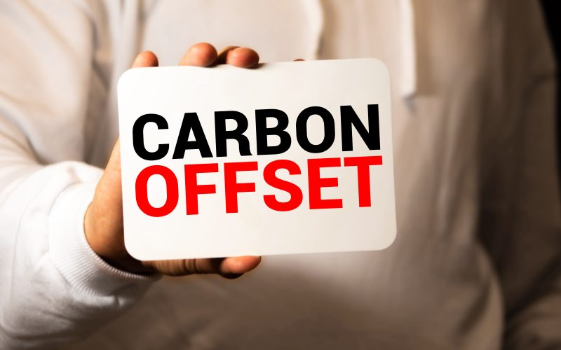 Why Did Greenpeace Call For An End To Carbon Offsets? - Carbon Herald